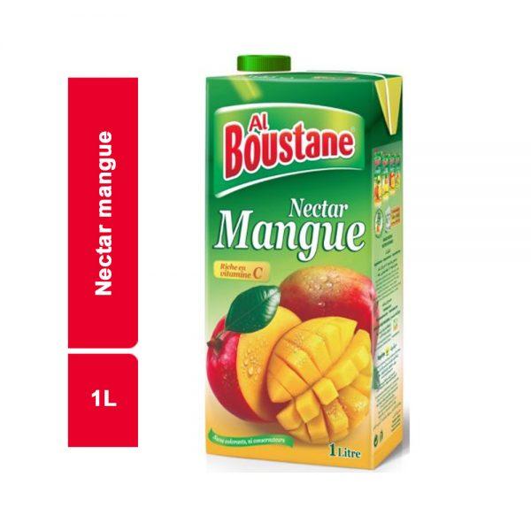 JUS NECTAR DE MANGUE ALBOUSTANE BRICK 1 L