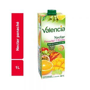 JUS NECTAR PANACHE VALENCIA BRICK 1 L