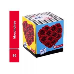 DISTRIBUTEUR 2 PLIS LOTUS PAQUET 80 PIECES
