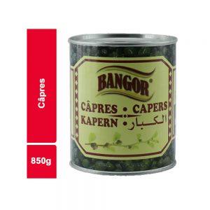 CAPRE BANGOR BOITE 850 GR